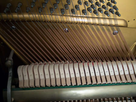 View of the bass strings and hammers.